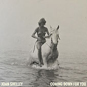 Coming Down For You van Joan Shelley