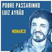 Pobre Passarinho de Luiz Ayrão