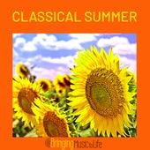 Classical Summer de Various Artists