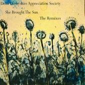 She Brought the Sun (The Remixes) von Delia Derbyshire Appreciation Society