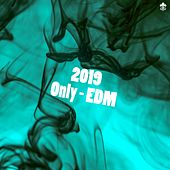 2019 Only - EDM von Various Artists