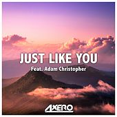 Just Like You by Axero