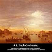 Violin Concerto No. 1 in A Minor & Air On The G String - Concertos - Canon in D Major - Adagio for Strings and Organ - Fur Elise & Moonlight Sonata - Ave Maria - Wedding March - Vol. I (Remastered) de Various Artists