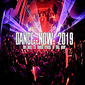 Dance Now 2019 von Various Artists