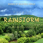 Forest: Rainstorm (Nature Sounds for Relaxation, Meditation, Healing & Sleep) by Sounds of Beautiful World