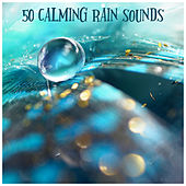 50 Calming Rain Sounds van Rain Sounds (2)