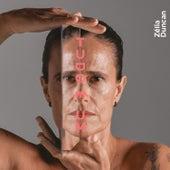 Tudo É Um by Zélia Duncan