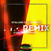FYM Remix (Remix) by Stallion