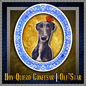 Hoy Quiero Confesar by Los Olestar