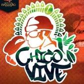 Chico Vive by Junina Evolução