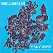 Many Ways de Wes Anderson