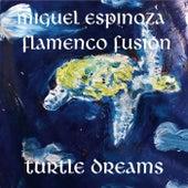 Turtle Dreams by Miguel Espinoza Flamenco Fusion
