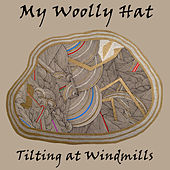 Tilting at Windmills by My Woolly Hat