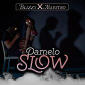 Damelo Slow by Blizzy