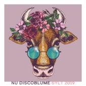 Nu Discoblume, Sylt 2019 de Various Artists