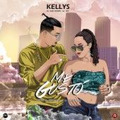 Me Gustó by The Kellys