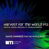 Harvest for the World, Pt. 2 by Groove Junkies