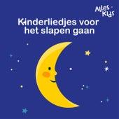 Kinderliedjes voor het slapen gaan by Alles Kids