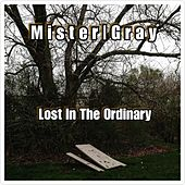 Life in the Ordinary by Mister
