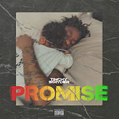 Promise by Tinchy Stryder
