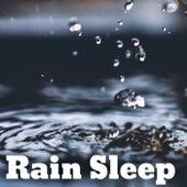 Rain Sleep de Rain Sleeping Sound