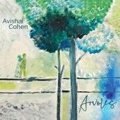 Simonero de Avishai Cohen