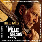 Hello Walls:Classic Willie Nelson Country by Willie Nelson