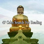 47 Calm Sounds for Reading von Lullabies for Deep Meditation