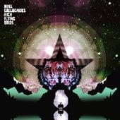Black Star Dancing von Noel Gallagher's High Flying Birds