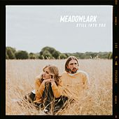 Still Into You by Meadowlark