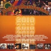 Seljordfestivalen 2010 de Various Artists