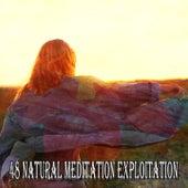 48 Natural Meditation Exploitation de Meditación Música Ambiente