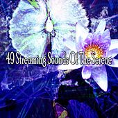 49 Streaming Sounds of the Serene von Massage Therapy Music