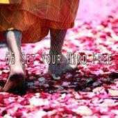 66 Set Your Mind Free de Meditación Música Ambiente