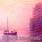 70 Tranquil Arrangements von Music For Meditation