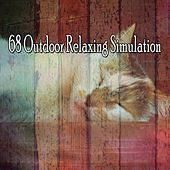 68 Outdoor Relaxing Simulation de Lullaby Land