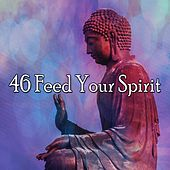 46 Feed Your Spirit de Zen Meditation and Natural White Noise and New Age Deep Massage