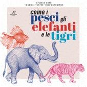 Come i pesci, gli elefanti e le tigri di Piccolo Coro Mariele Ventre Dell'Antoniano