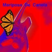 Mariposa de Canela de Jorge Fernando