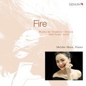 Fire: Works by Chopin & Liszt de Shize Shen