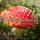 46 Soothing Spa Ambience de Sleepicious