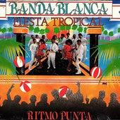 Fiesta Tropical Con Ritmo Punta de Banda Blanca