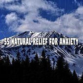 55 Natural Relief for Anxiety de White Noise Babies