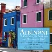 Albinoni: 12 Cantatas for Soprano and Contralto, Op. 4 by L' Arte dell'Arco
