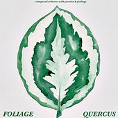 Foliage by Quercus