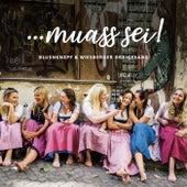 Muass sei! von Various Artists