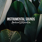 Instrumental Sounds: Ambient Relaxation von Instrumental Relaxation