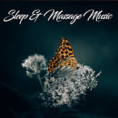 Sleep & Massage Music by Various Artists
