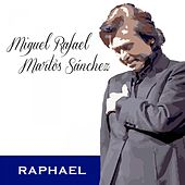 Miguel Rafael Martos Sánchez de Raphael