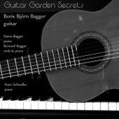 Guitar Garden Secrets de Boris Björn Bagger
